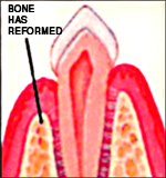 Nashville Dentist